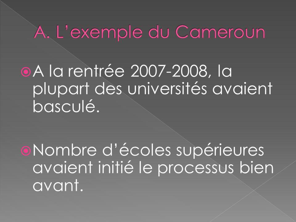 A. L'exemple du Cameroun