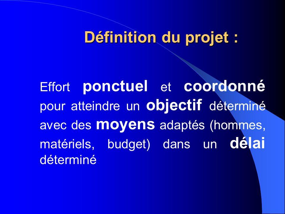 Définition du projet :