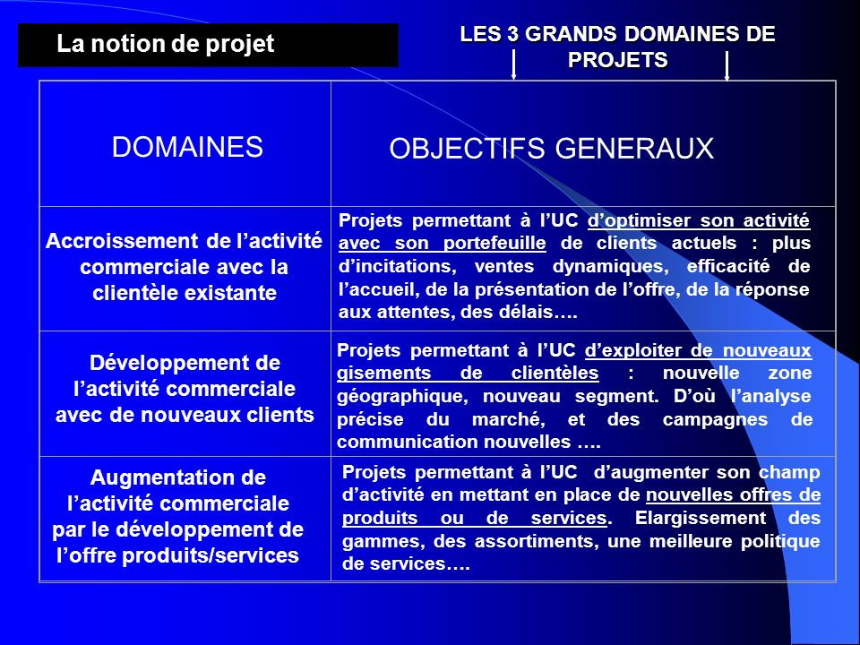 DOMAINES OBJECTIFS GENERAUX La notion de projet
