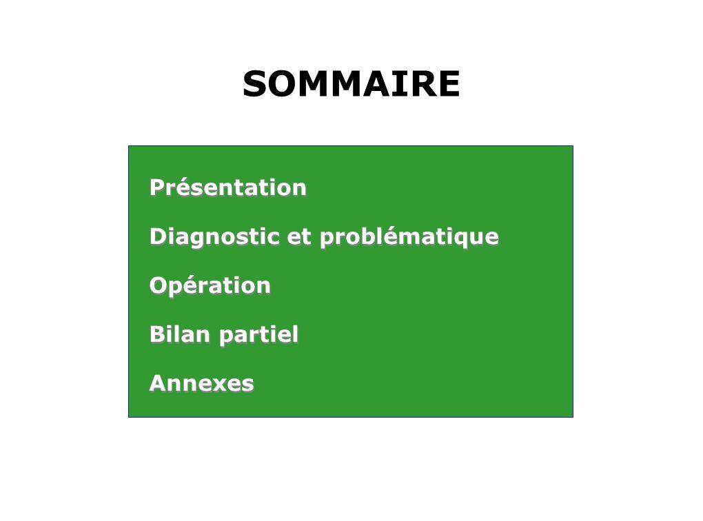 SOMMAIRE Présentation Diagnostic et problématique Opération