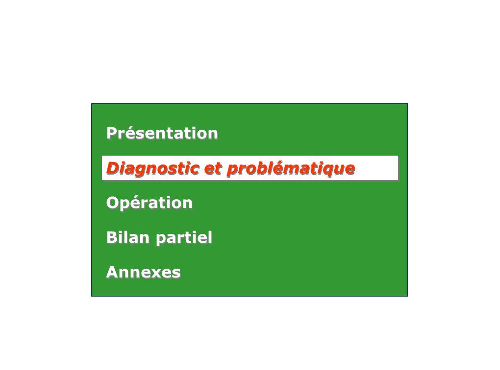 Présentation Diagnostic et problématique Opération Bilan partiel Annexes