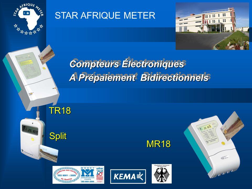 Compteurs Électroniques A Prépaiement Bidirectionnels