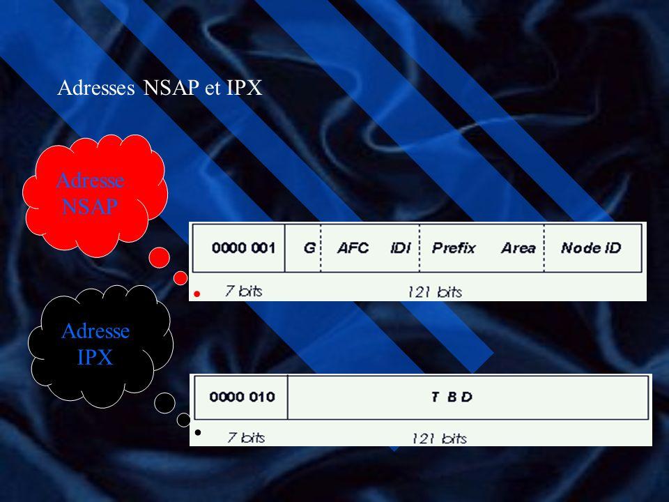 Adresses NSAP et IPX Adresse NSAP Adresse IPX