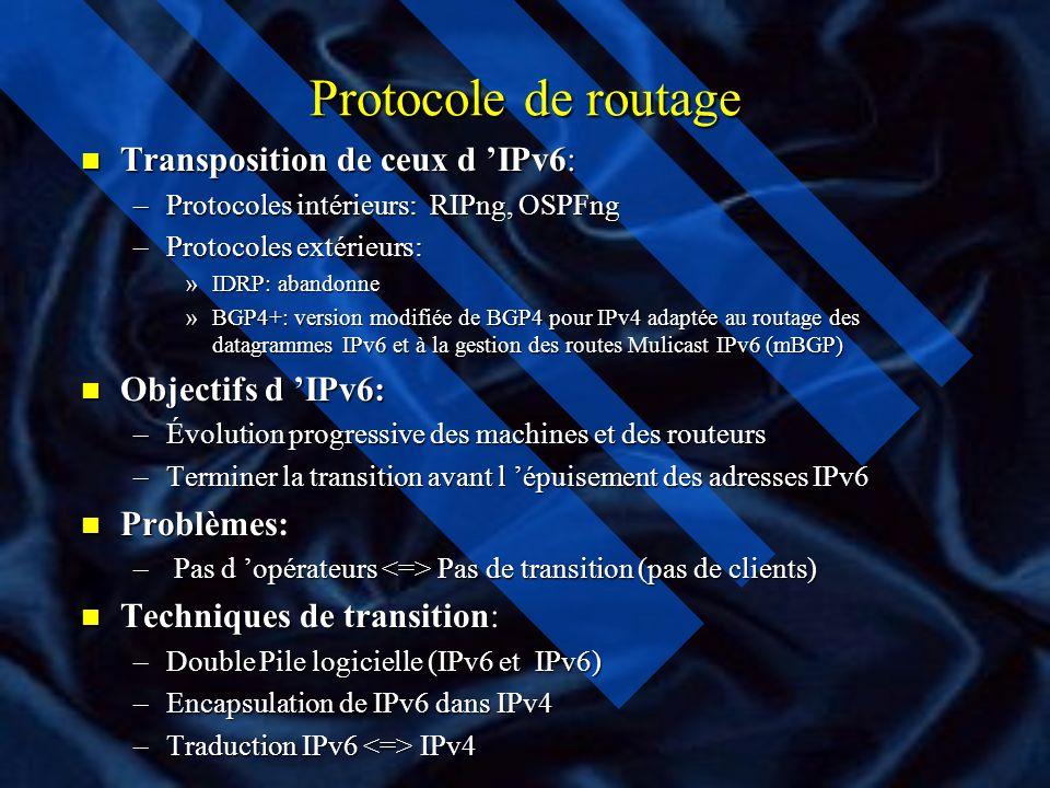 Protocole de routage Transposition de ceux d 'IPv6: Objectifs d 'IPv6: