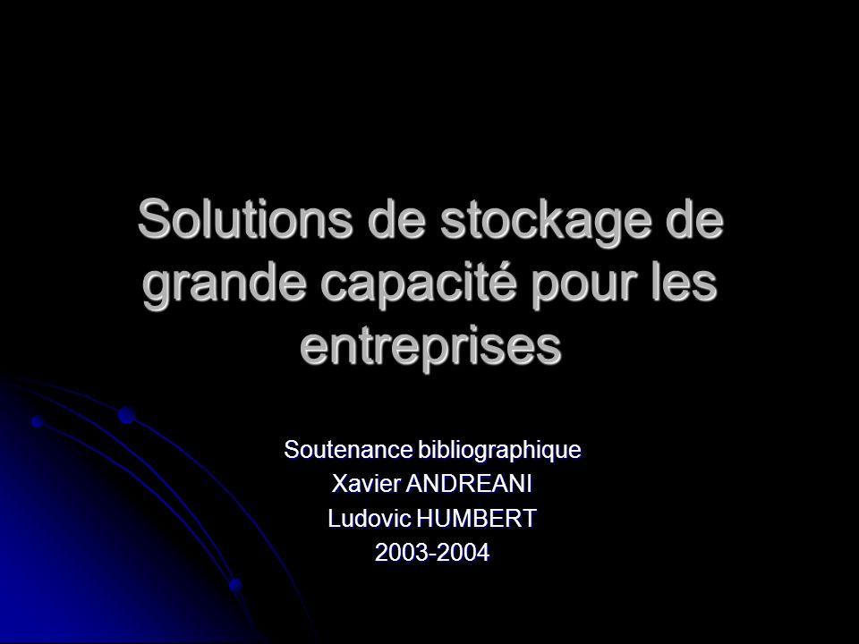 Solutions de stockage de grande capacité pour les entreprises
