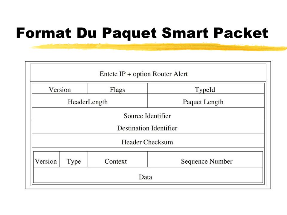 Format Du Paquet Smart Packet