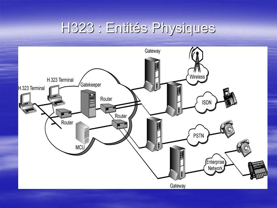 H323 : Entités Physiques