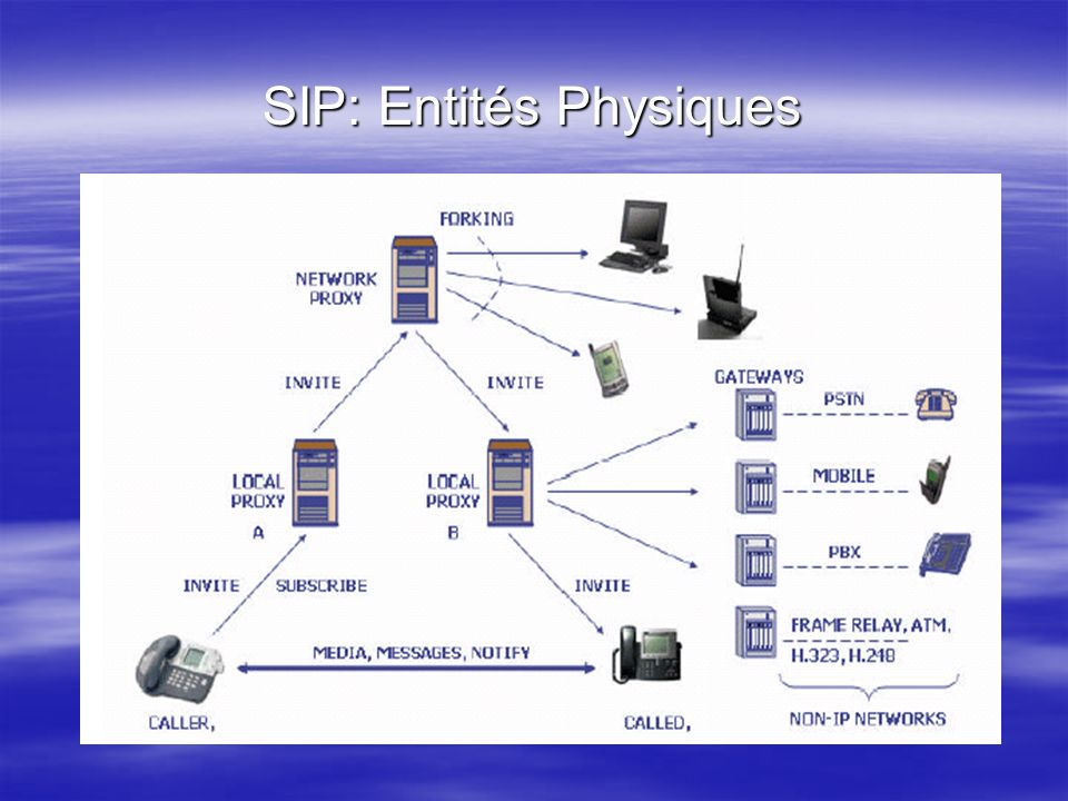 SIP: Entités Physiques