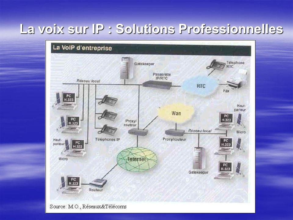 La voix sur IP : Solutions Professionnelles