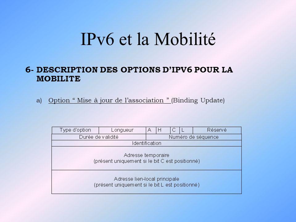 IPv6 et la Mobilité 6- DESCRIPTION DES OPTIONS D'IPV6 POUR LA MOBILITE