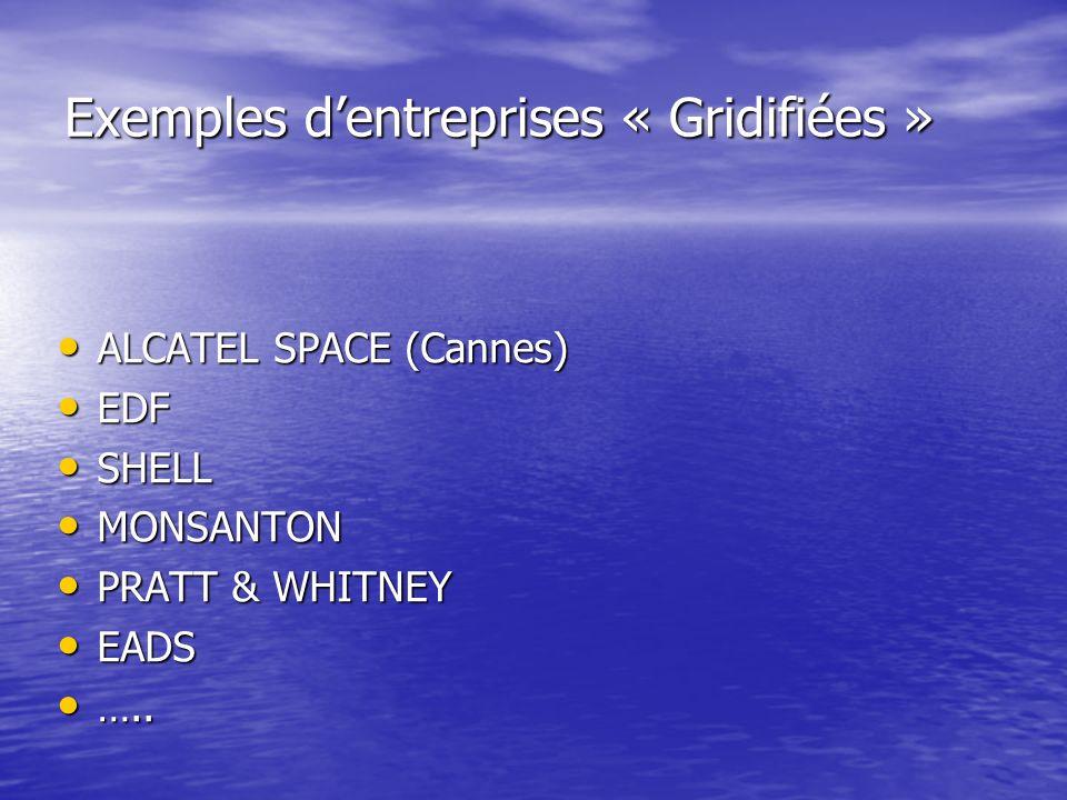 Exemples d'entreprises « Gridifiées »