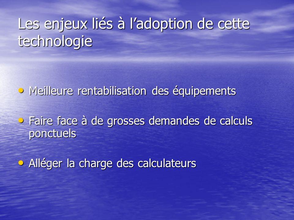 Les enjeux liés à l'adoption de cette technologie