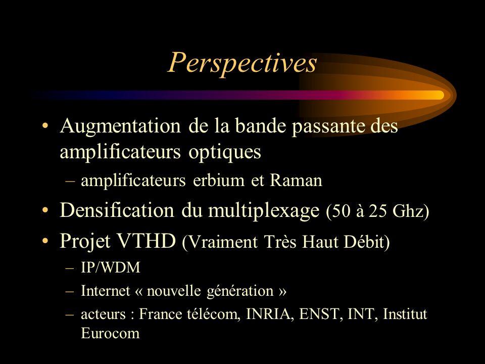 PerspectivesAugmentation de la bande passante des amplificateurs optiques. amplificateurs erbium et Raman.