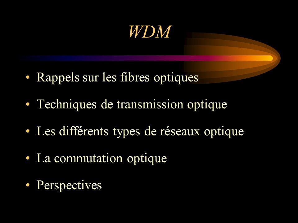 WDM Rappels sur les fibres optiques Techniques de transmission optique