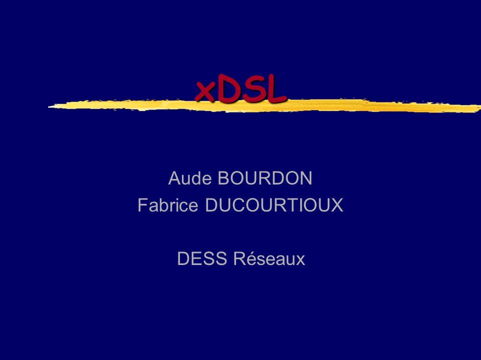 Aude BOURDON Fabrice DUCOURTIOUX DESS Réseaux