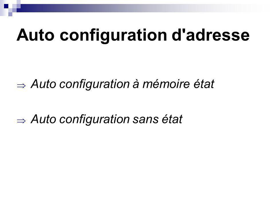 Auto configuration d adresse