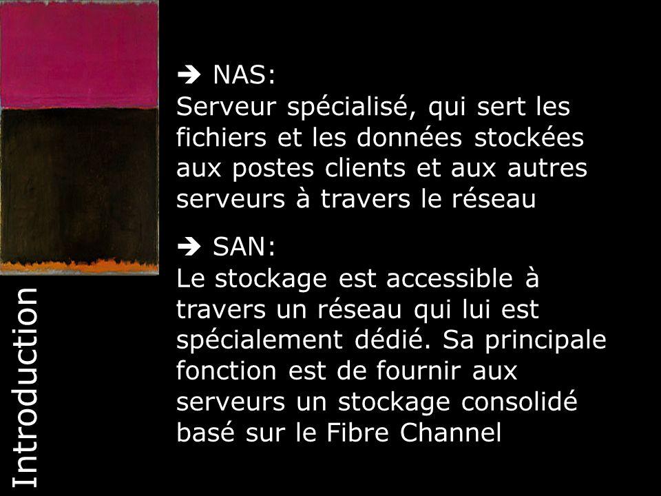  NAS: Serveur spécialisé, qui sert les fichiers et les données stockées aux postes clients et aux autres serveurs à travers le réseau.