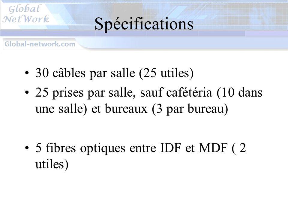 Spécifications 30 câbles par salle (25 utiles)