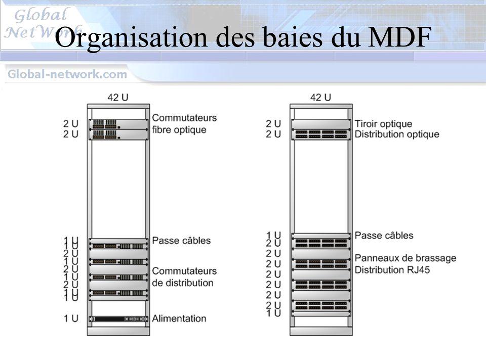 Organisation des baies du MDF