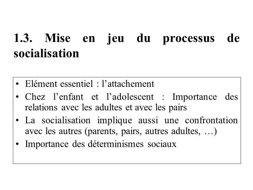 1.3. Mise en jeu du processus de socialisation