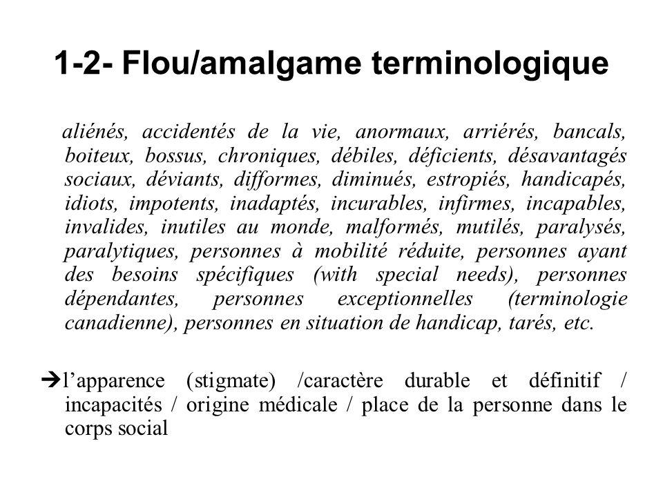 1-2- Flou/amalgame terminologique