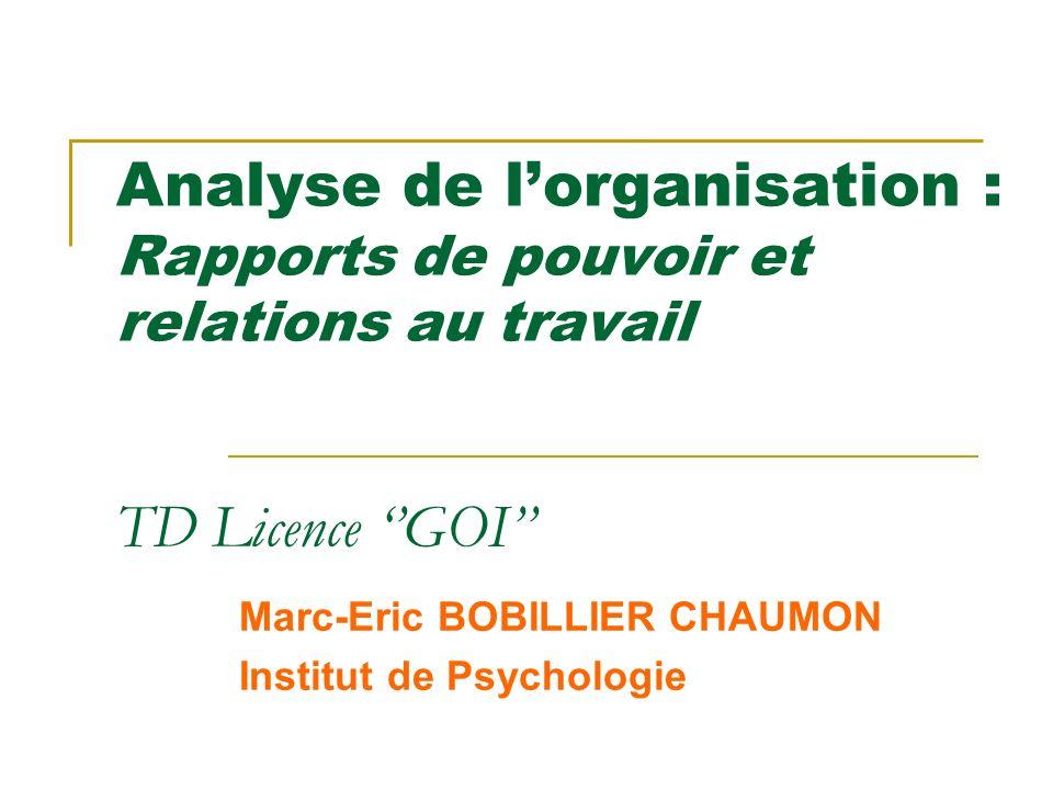 Marc-Eric BOBILLIER CHAUMON Institut de Psychologie