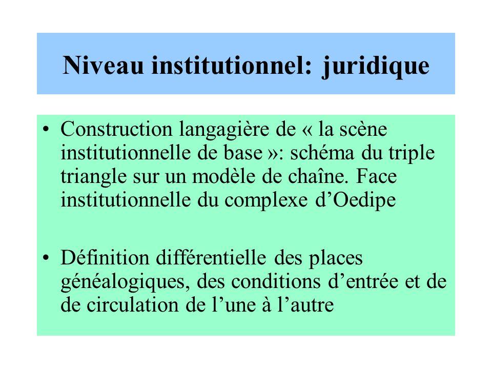 Niveau institutionnel: juridique