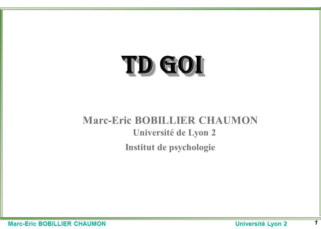 TD GOI Marc-Eric BOBILLIER CHAUMON Université de Lyon 2