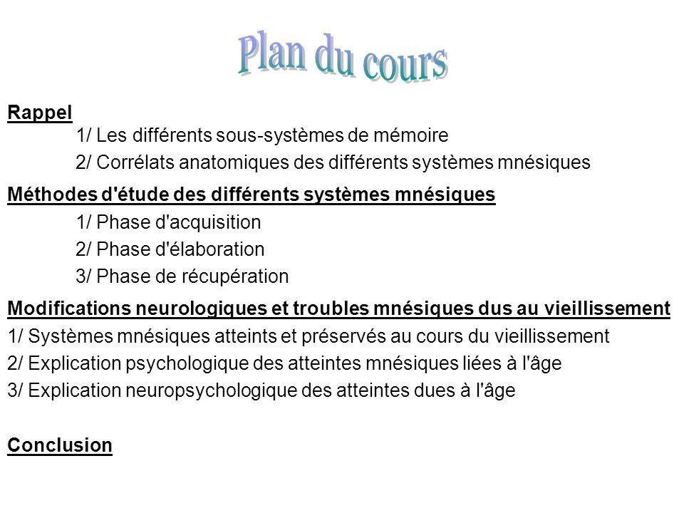 Plan du cours Rappel 1/ Les différents sous-systèmes de mémoire