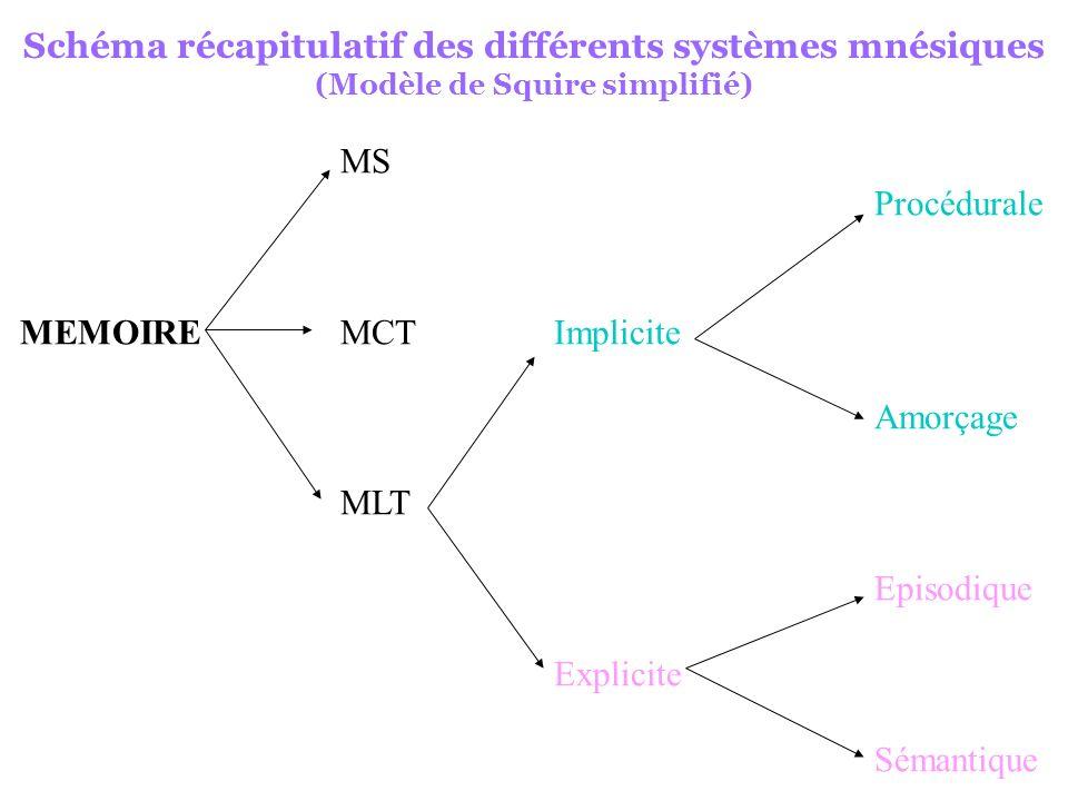 Schéma récapitulatif des différents systèmes mnésiques