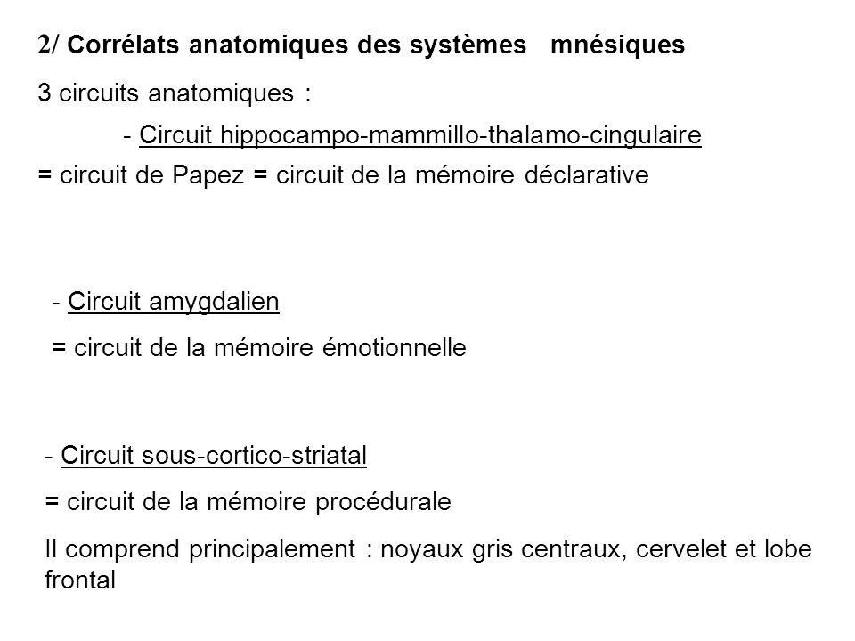 2/ Corrélats anatomiques des systèmes mnésiques