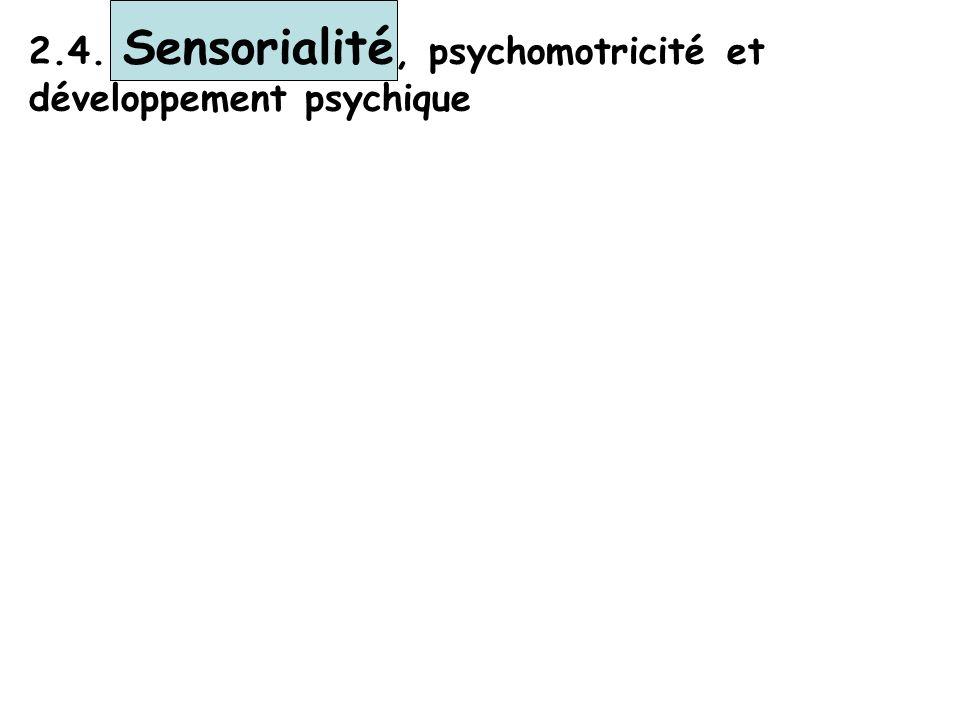 2.4. Sensorialité, psychomotricité et