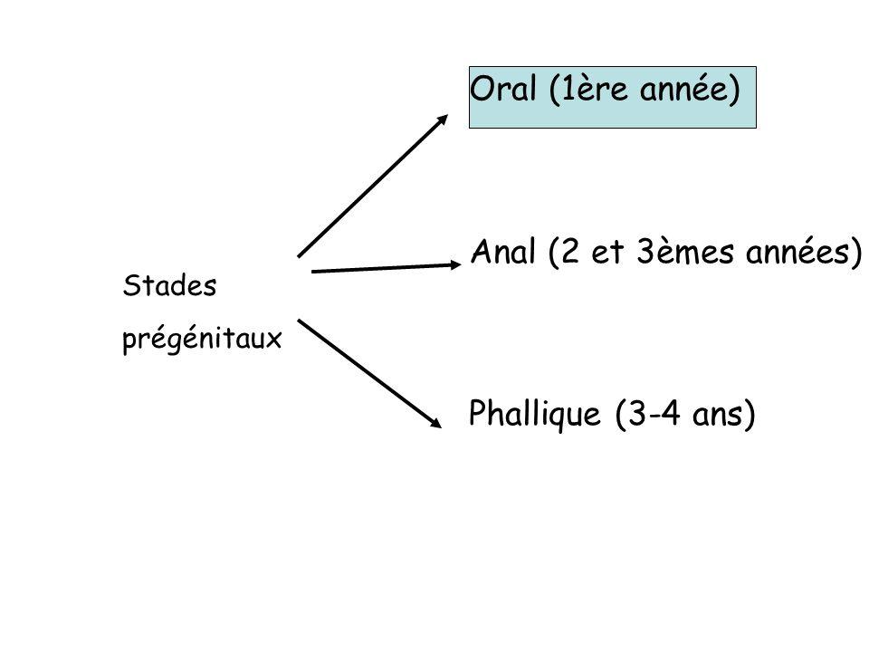 Oral (1ère année) Anal (2 et 3èmes années) Phallique (3-4 ans) Stades