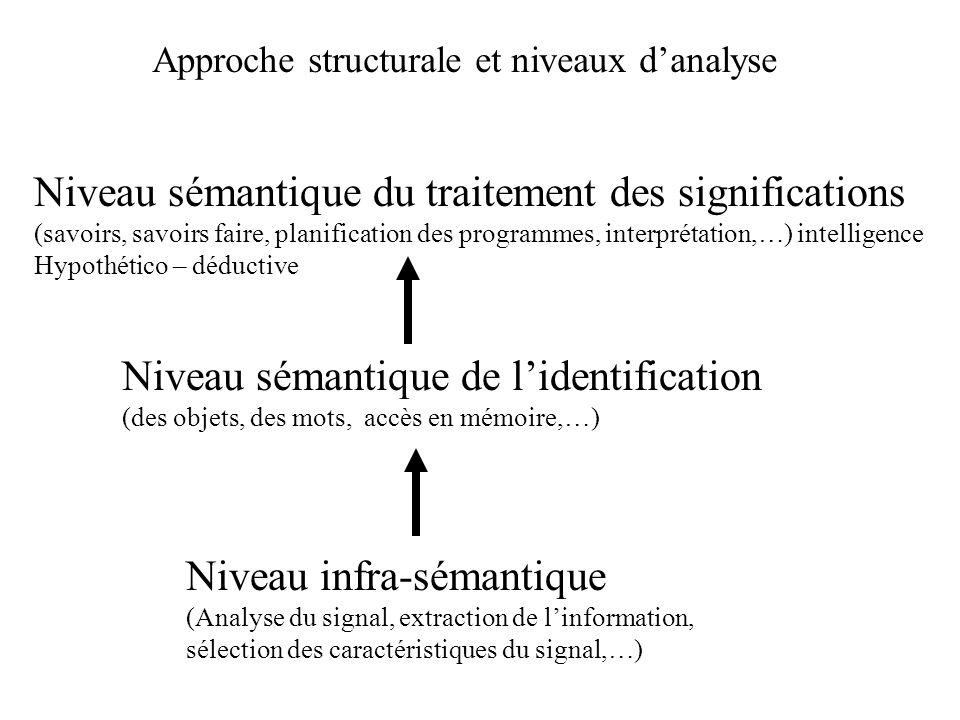 Niveau sémantique du traitement des significations