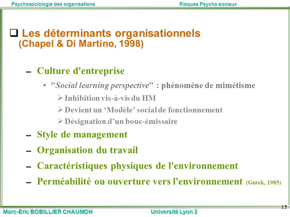 Les déterminants organisationnels (Chapel & Di Martino, 1998)
