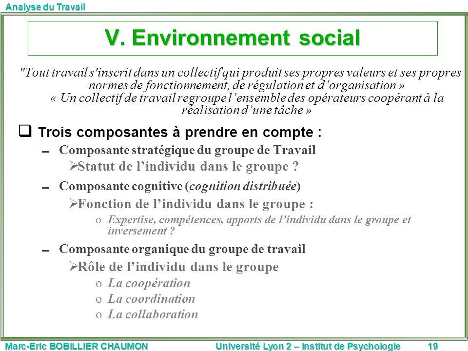 V. Environnement social