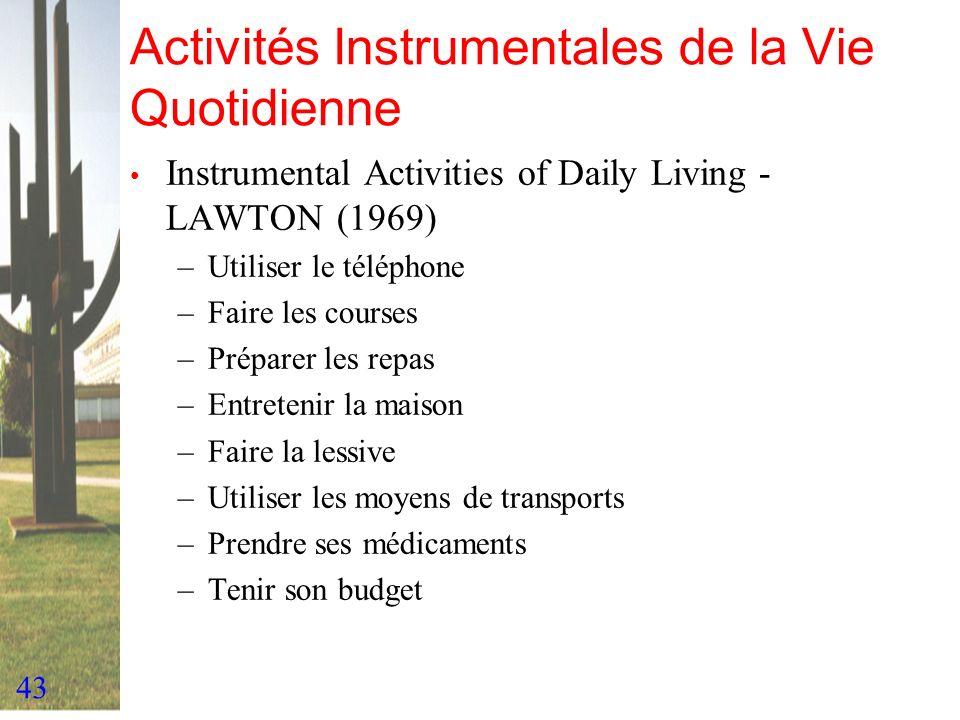 Activités Instrumentales de la Vie Quotidienne