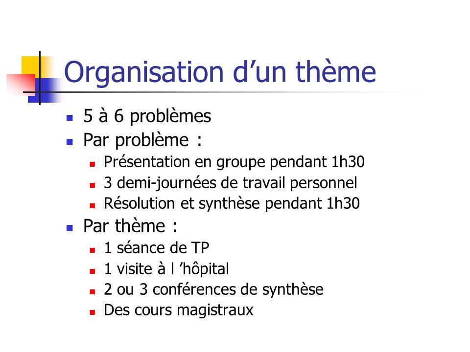 Organisation d'un thème