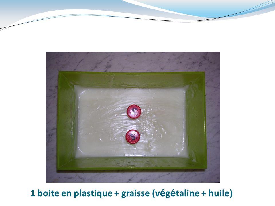 1 boite en plastique + graisse (végétaline + huile)