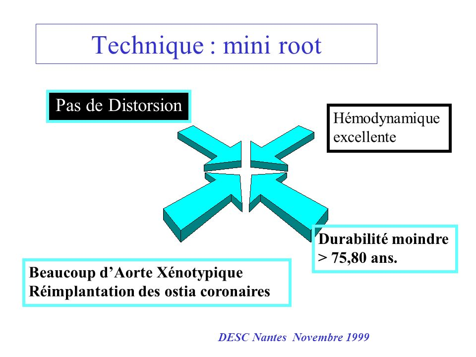 Technique : mini root Pas de Distorsion Pas de Distorsion