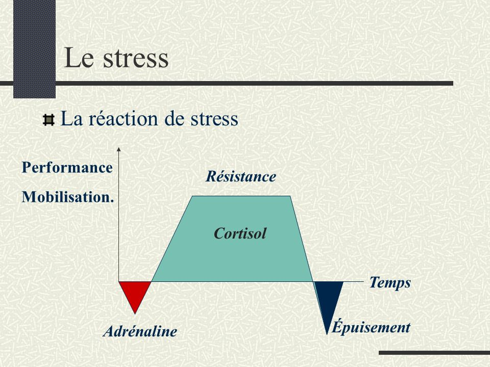 Le stress La réaction de stress Performance Mobilisation. Résistance