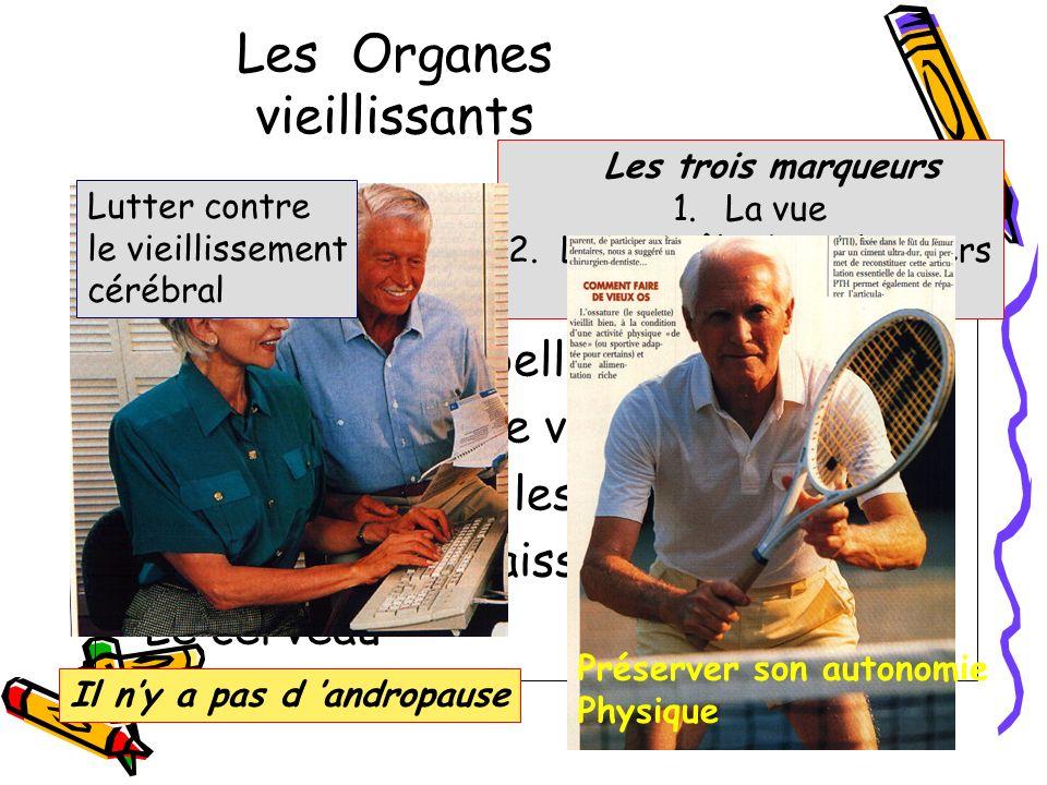 Les Organes vieillissants