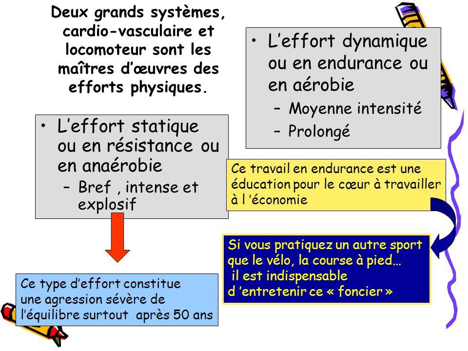 L'effort dynamique ou en endurance ou en aérobie