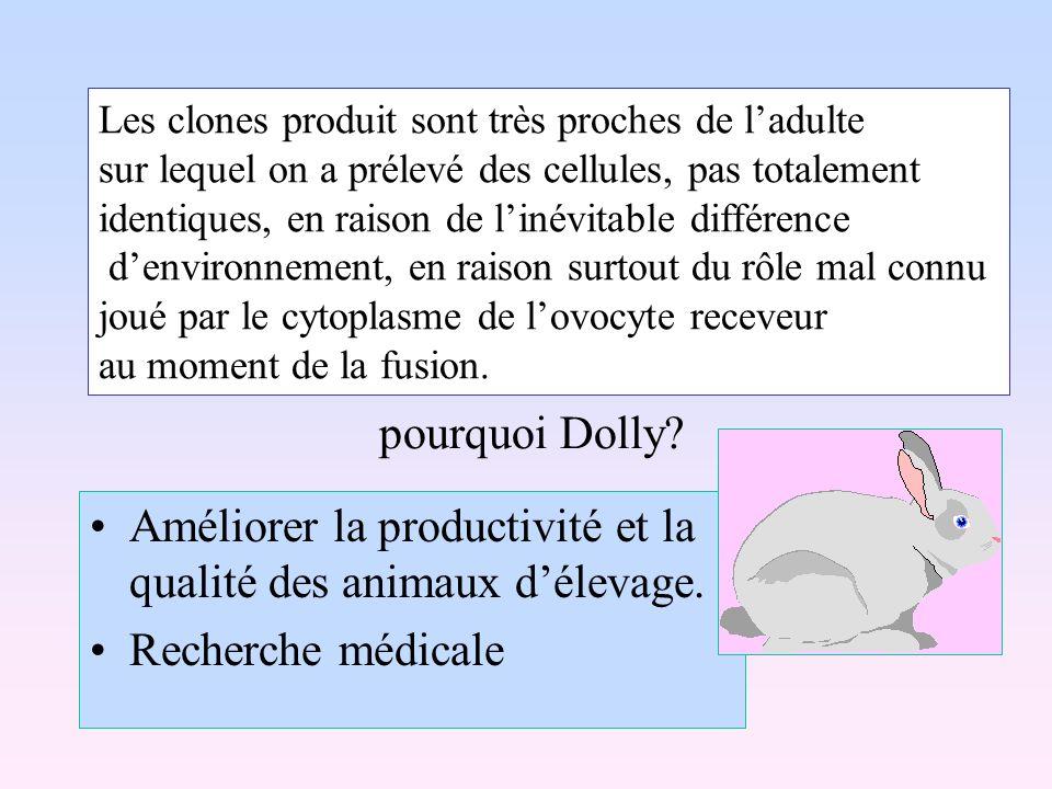 Améliorer la productivité et la qualité des animaux d'élevage.