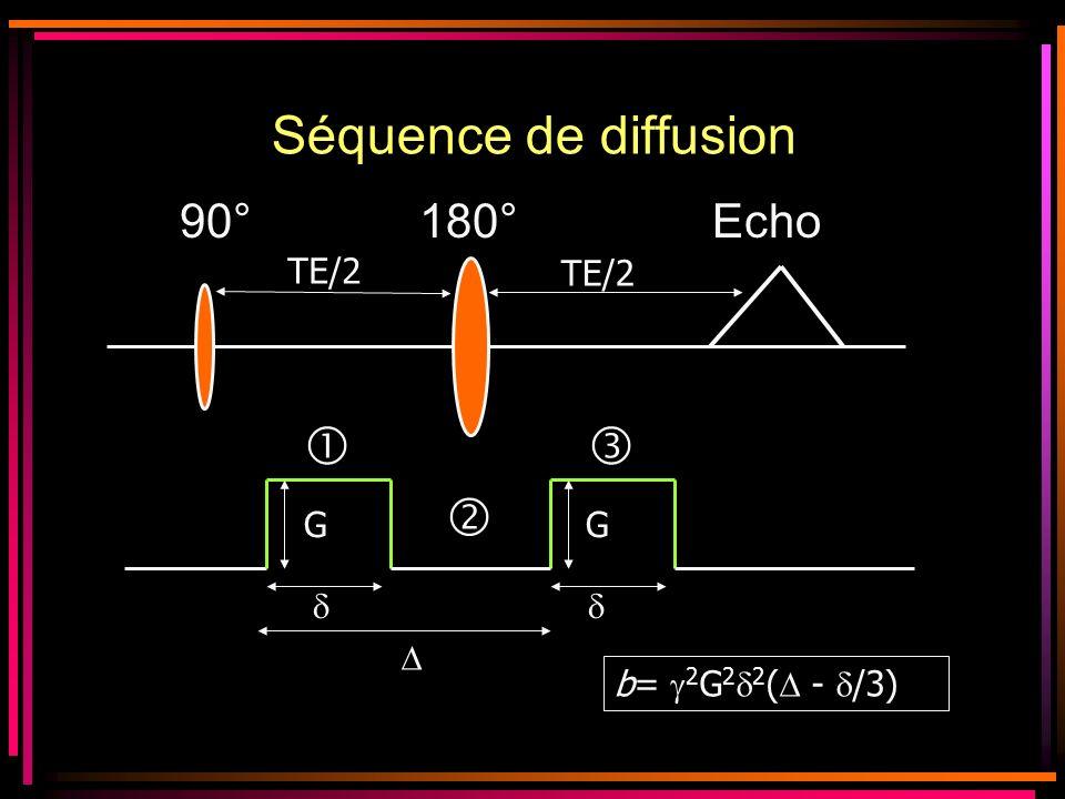 Séquence de diffusion    90° 180° Echo TE/2 TE/2 G G   