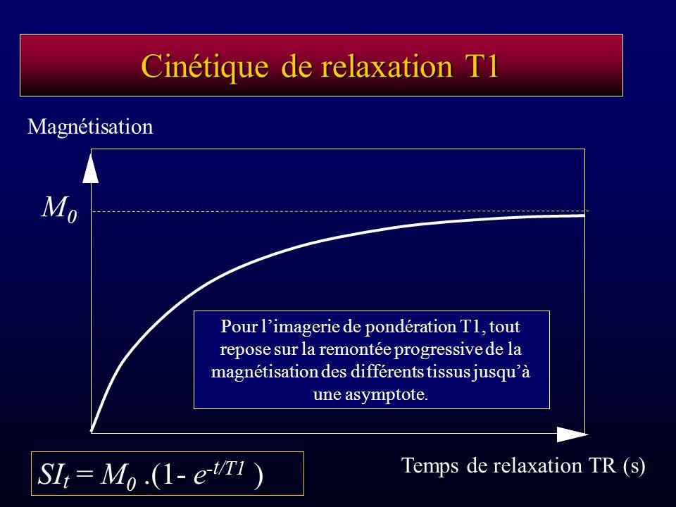 Cinétique de relaxation T1