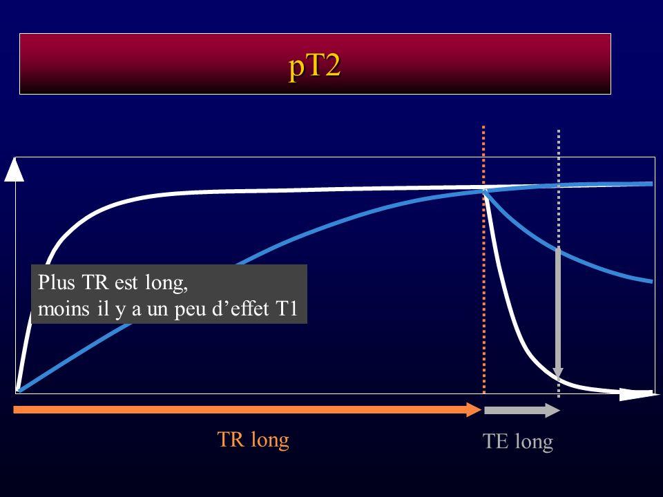 pT2 Plus TR est long, moins il y a un peu d'effet T1 TR long TE long