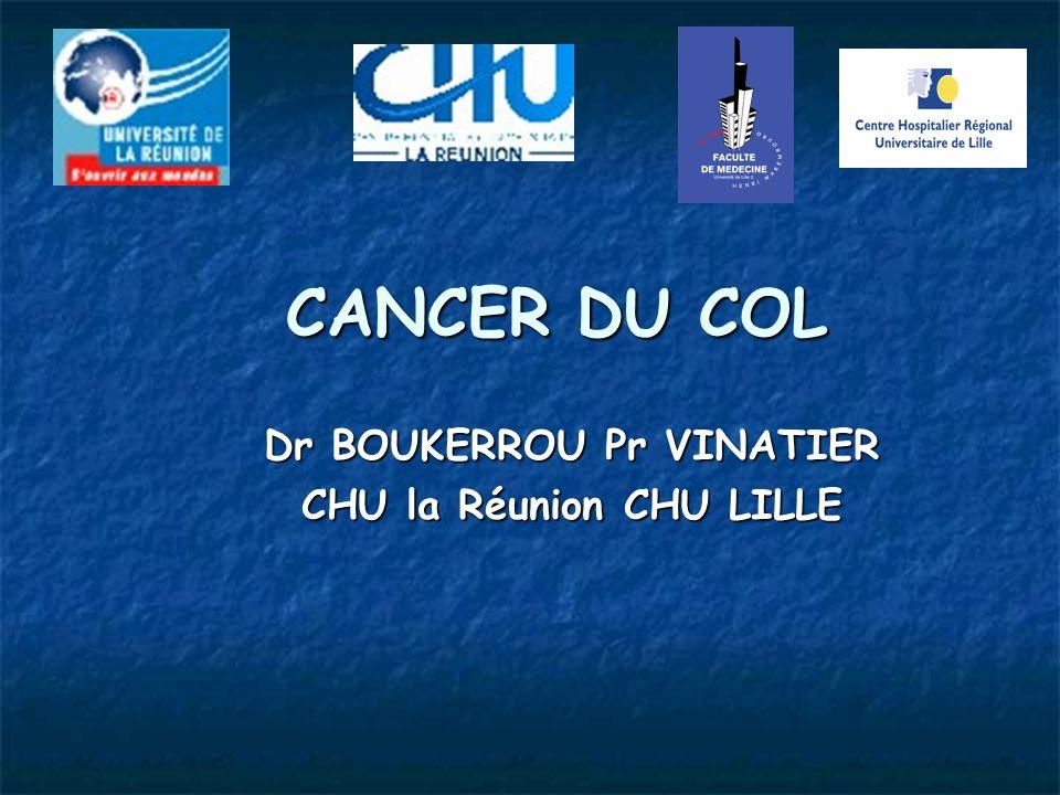 Dr BOUKERROU Pr VINATIER CHU la Réunion CHU LILLE