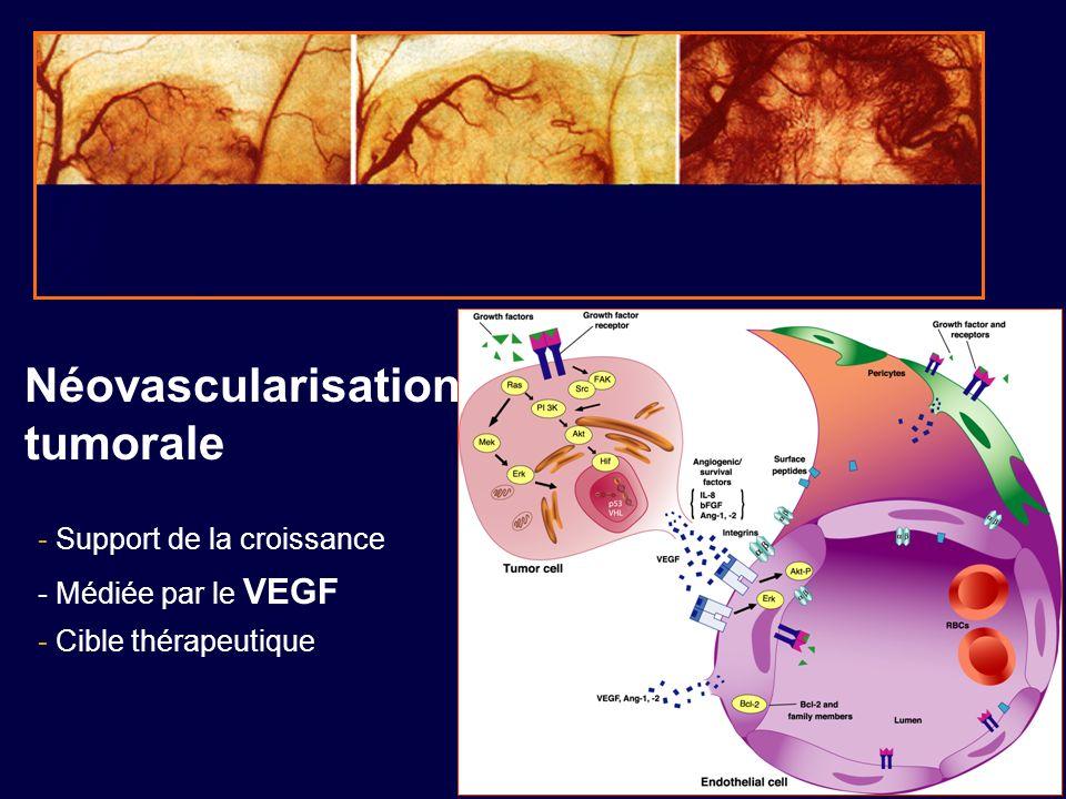 Néovascularisation tumorale