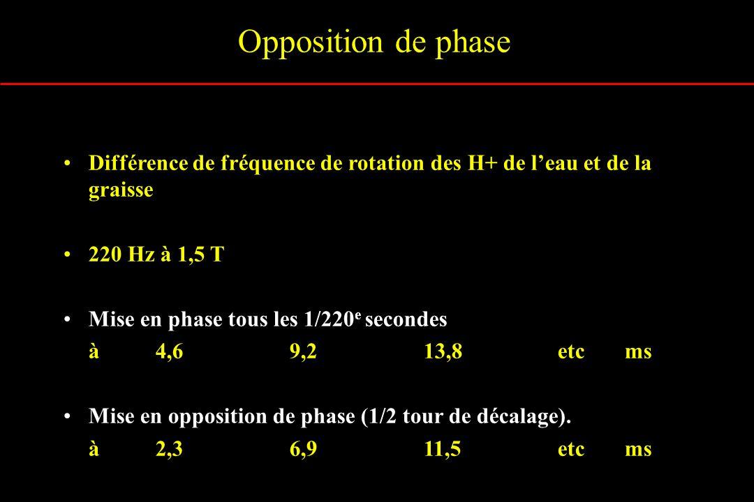 Opposition de phase Différence de fréquence de rotation des H+ de l'eau et de la graisse. 220 Hz à 1,5 T.